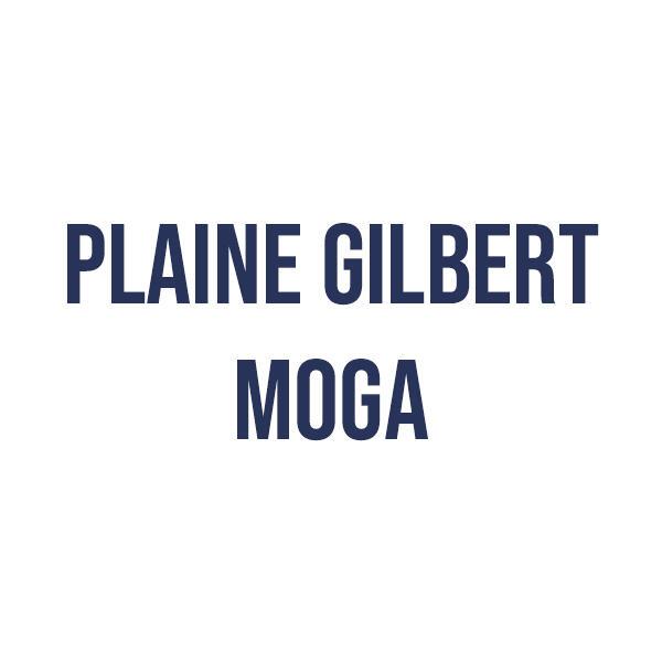 plainegilbertmoga_1596642112