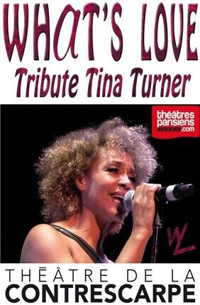 WHAT'S LOVE, CONCERT HOMMAGE A TINA TURNER