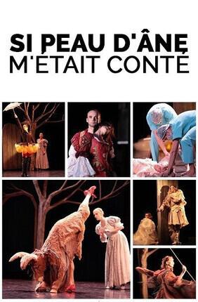 SI PEAU D'ANE M'ETAIT CONTE (Meudon)