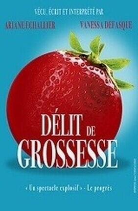 DELIT DE GROSSESSE (Saint Etienne)