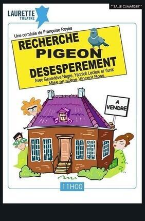 RECHERCHE PIGEON DESESPEREMENT (Laurette Avignon)
