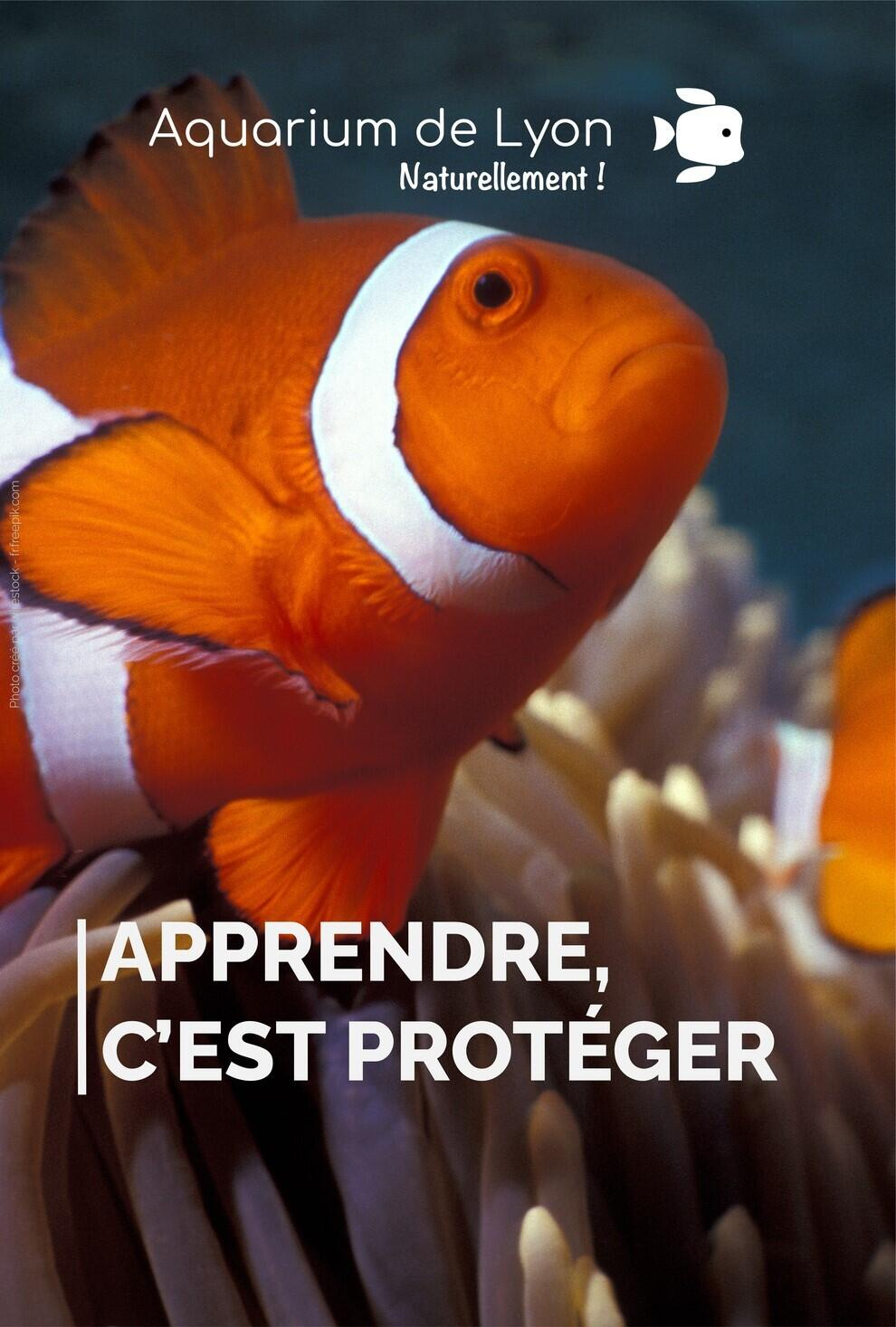 aquariumdelyon_1626851612