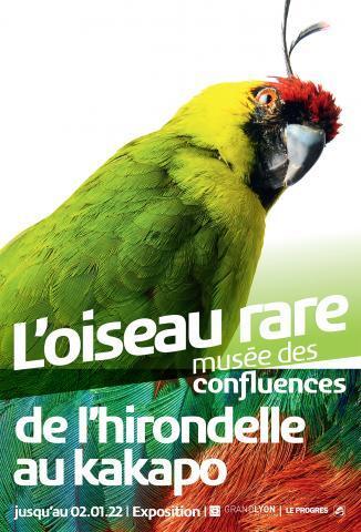oiseaurareconfluences_1630926634