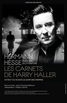 LES CARNETS DE HARRY HALLER (EXTRAIT DU « LOUP DES STEPPES »)