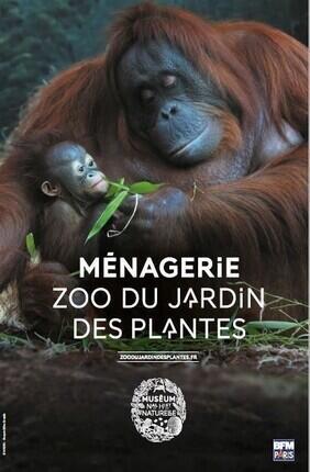 LA MENAGERIE, LE ZOO DU JARDIN DES PLANTES
