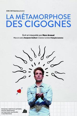 la_metamorphose_des_cigognes_1627033943