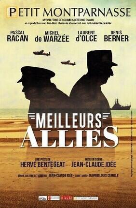 MEILLEURS ALLIES (Theatre les 3 Soleils)
